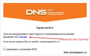 ДНС личный кабинет: бонусы прозапас